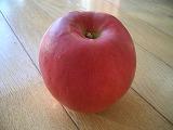 りんご 紅玉