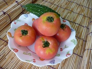 紫外線対策にトマトの効果
