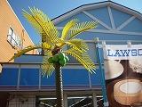 葉山 ローソン 椰子の木ライト