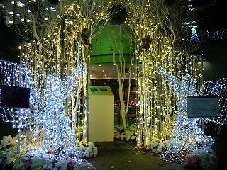 ライトアップ 三井ビル前 きずな、のクリスマス 1